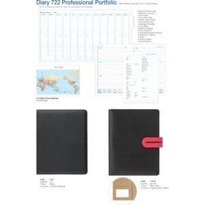 Diary 722 Professional Portfolio